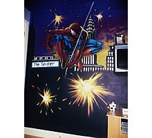 spiderman wall mural Photographic Print
