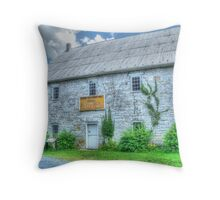 Relic From The Past Throw Pillow