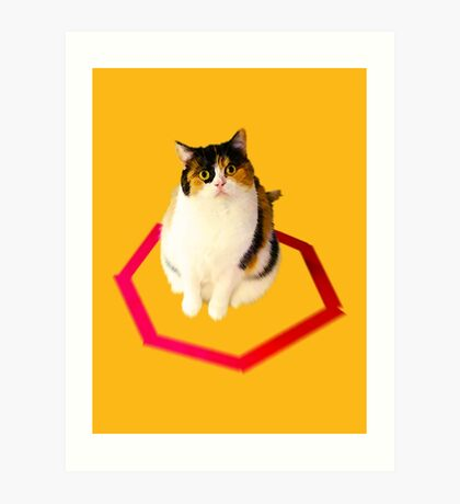 cat trap Art Print