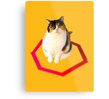 cat trap Metal Print