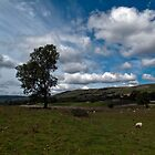 Bainbridge, Wensleydale by Jack Thomas