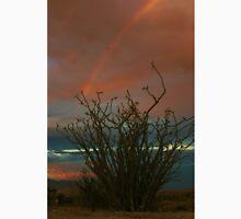 Ocotillo Rainbow Unisex T-Shirt