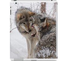 Timberwolves -  Montebello, PQ iPad Case/Skin