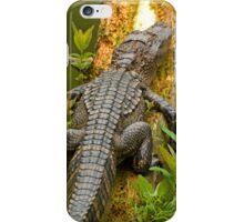 Gator iphone iPhone Case/Skin