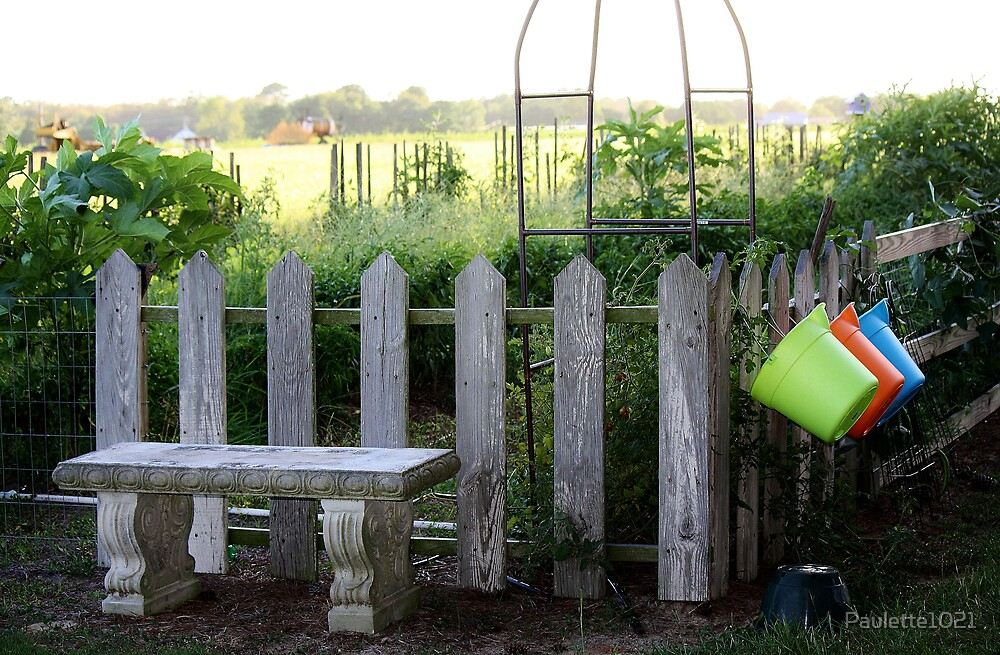 The Garden by Paulette1021