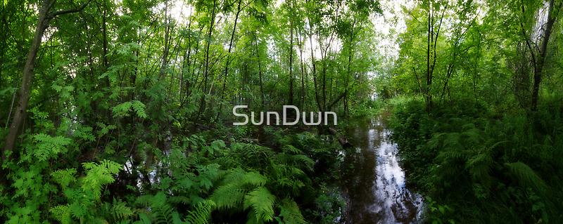 Flooded by SunDwn