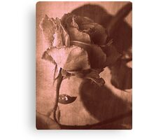 Intuitively Romantic in Sepia Canvas Print