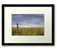 Surviving Hurricane Sandy Framed Print