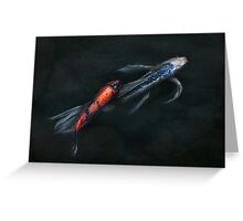 Animal - Fish - Beauty and Grace  Greeting Card