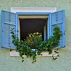 Blue Shutters. by Lee d'Entremont