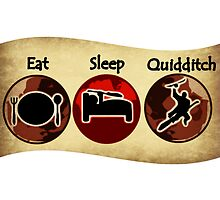 Eat, Sleep, Quidditch by IN3004
