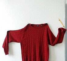 The Red Sweater by kathrynh