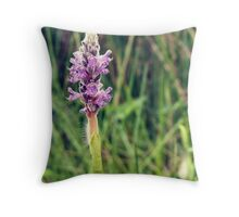 Purple Pickerel Weed Throw Pillow