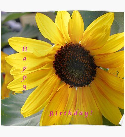 Sunflower Happy Birthday Poster
