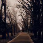 Wistful Winter by Thomayne