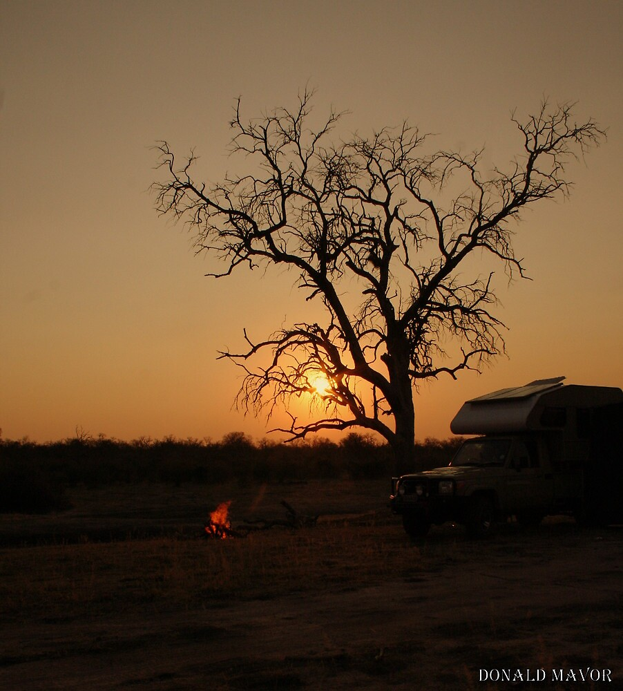 African Camp by Donald  Mavor