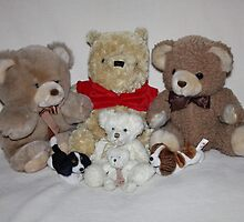 Teddy Family Portrait by AnnDixon