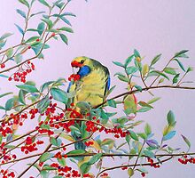 Green Rosella in Red Berry Tree by Jacqui Cleijne