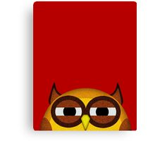 Pocket owl is highly suspicious Canvas Print