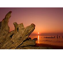 Driftwood and Sunrise Photographic Print