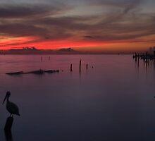 Galveston Bay Sunrise by Paul Wolf