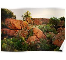 Texas Hill Country Hillside Poster