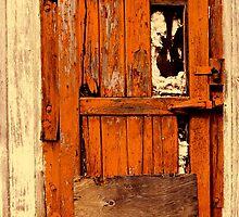 Old Orange Door by Paul Wolf