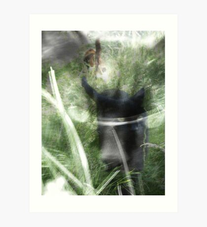 cats in the grass Art Print