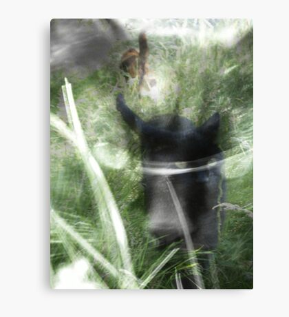 cats in the grass Canvas Print