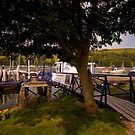 Noss Boat Marina at Kingswear by Jay Lethbridge