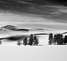 Serenity by FranJ