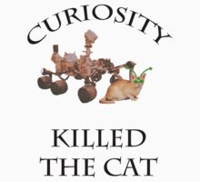 Curiosity killed the cat by SageOz