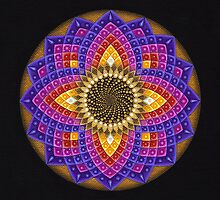 Cosmic Sunflower Mandala by Deanna Gardam