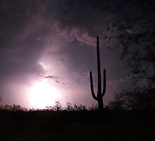 Lightening Bright Saguaro   by Kimberly Chadwick