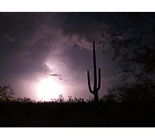 Lightening Bright Saguaro   Photographic Print