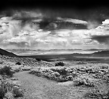 Thunder Storm over Mono Lake, Ansel Adams Wilderness Area, CA by Pete Paul