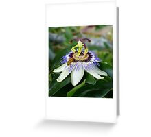 Passionate Greeting Card