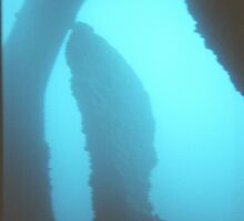 Film Snapshot Study- 40ft below the past is still dead. by JasonDallas