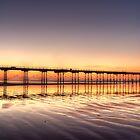 Saltburn Pier by Darren Allen