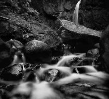 Moffett Falls I · Monochrome by Tula Top