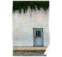 Metal Door with Vines Poster