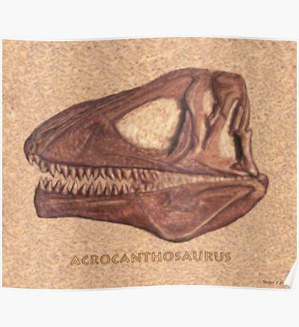 Acrocanthosaurus Skull Fossil Poster