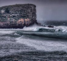 Avalon Headland by Dianne English