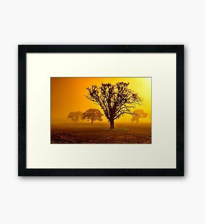 """In The Mists Of Dawn"" Framed Print"