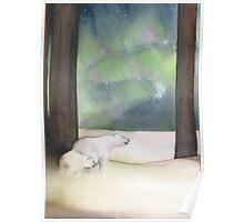 Polar Bears - Ursa Major and Ursa Minor Poster