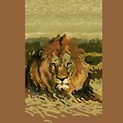 lion face by David  Kennett
