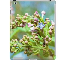 First Lilac Flower In Spring iPad Case/Skin