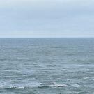 Ocean by Joan Wild