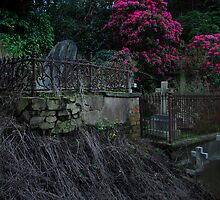 Twilight Time by Peter Kurdulija