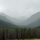 Bowen Mountain in Summer Storm  by Robert Meyers-Lussier